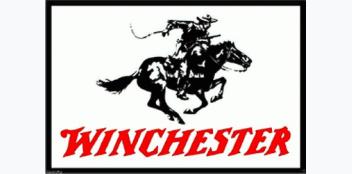 Winchester Hülsen